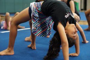 WSP gymnastics